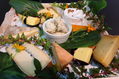 OPTION FROMAGES